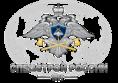 СПЕЦСТРОЙ РОССИИ -1